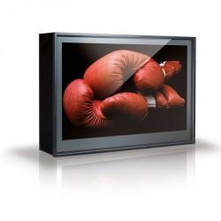 """Caisson écran extérieur ERARD DOOHBOX pour écrans de 30"""" à 37"""""""